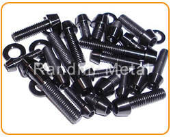 ASTM A194 Carbon Steel Fasteners Suppliers in Iran