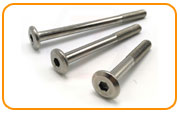 Inconel 601 Furniture Screw