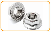 Inconel 601 Serrated Flange Nut