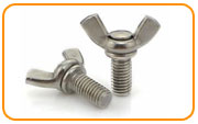 Hastelloy c22 Thumb & Wing Screws